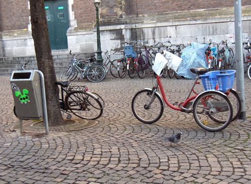 Fahrradtaube