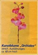 Kunstblume_orch