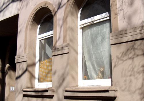 Fensterdecke_04_10
